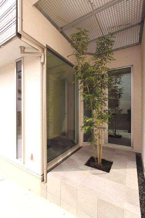 玄関横ににはシンボルツリーを配したパティオを設けました。