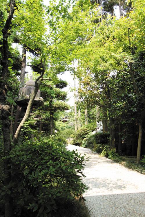 門から玄関までのアプローチに植栽を配して、自然と調和した空間を演出しました。