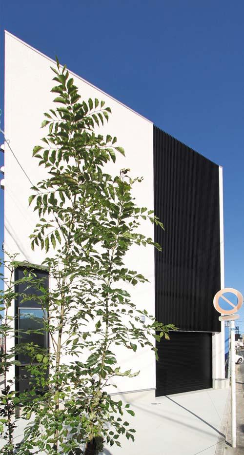 建物の道路側にはシンボルツリーを配して、緑と建物が美しく調和する様配慮しました。